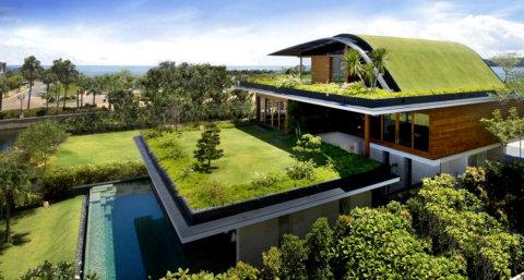 zelena strecha PLATON DE 20